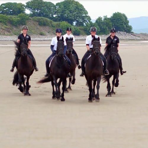 The Friesian Experience - Black Horses on Bardsea Beach, Cumbria